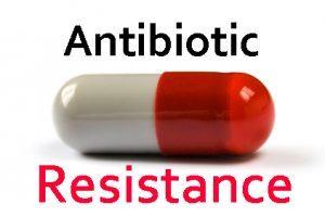 Novel antibiotic resistance gene in milk