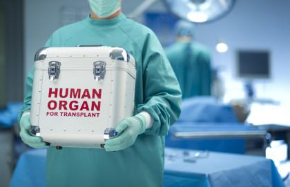 Bravo: Doctors perform Eight transplants within 24 hours