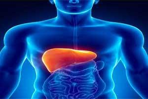 Vasopressin and nitroglycerin combo reduces bleeding during liver surgery