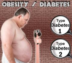 Key biomarker in obesity-related diabetes identified