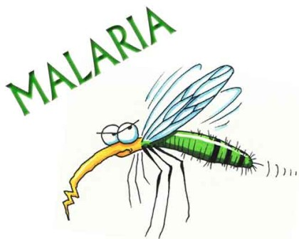 Malaria parasite may trigger human odor to lure mosquitoes