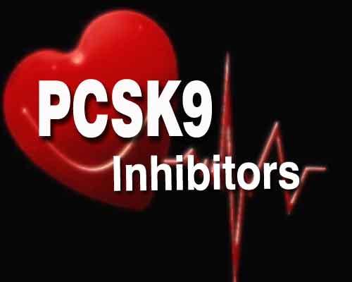 Alirocumab-Statin Combo cuts risk of CV events in diabetics: ODYSSEY Trial