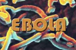 Single human antibody shows promise against Ebola