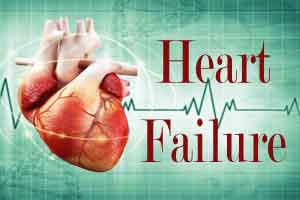 A paunch ups heart failure risk