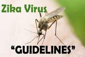 Guidelines on Zika Virus Disease