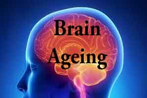 Exercise to slow down brain's ageing clock by 10 years