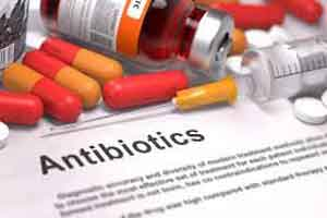 Antibiotics trigger pathogens in gut