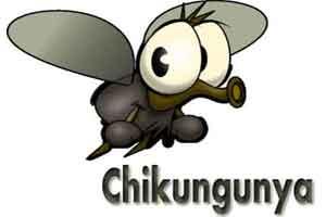 Delhi records 311 dengue cases, 20 of chikungunya