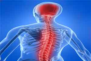 AMRI introduces advanced system for spinal defects