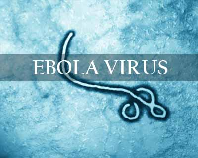 Human semen can carry Ebola virus 9 months after recovery