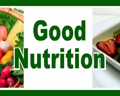 Good Nutrition Positively Affects Social Development, Penn Research Shows