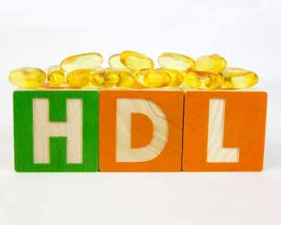 HDL protection dependent on two other blood lipids: Study