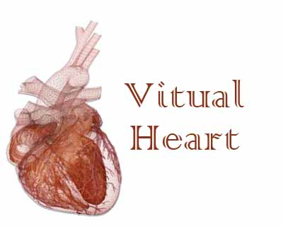 Virtual heart may prove instrumental in cardiac disease treatment