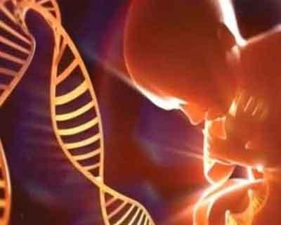 New IVF method limits transfer of bad DNA to babies: study