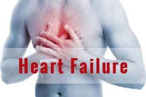 Heart failure is associated with loss of important gut bacteria