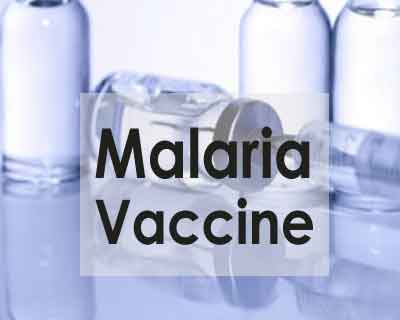 Scientists devise novel way to predict efficacy of malaria vaccines