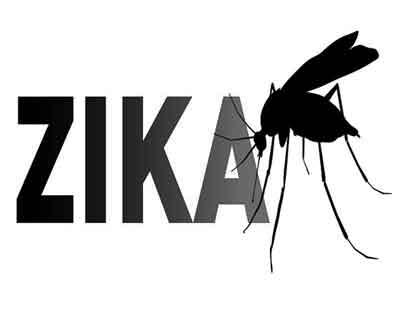 Women at greater risk for Zika infection due to suppressed vaginal immune response