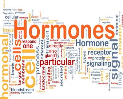 Progesterone may protect women from flu
