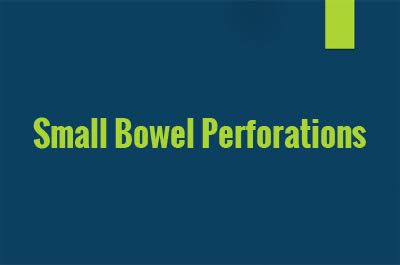 Small Bowel Perforations – Standard Treatment Guidelines