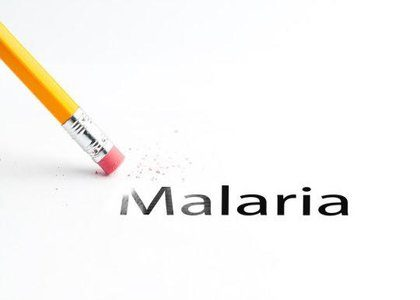 New study outlines strategy for eradication of malaria
