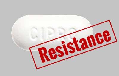 Ciprofloxacin No longer Effective In Shigellosis, Typhoid