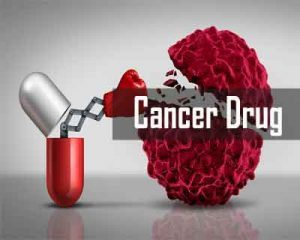 BARC Scientists Develop Cancer Drugs From Rampatri Plant