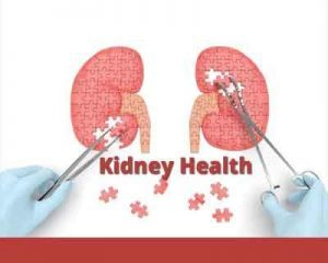 Assessment of Global Kidney Health Care Status: JAMA