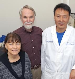 Skin cell model advances study of genetic mutation linked to heart disease, stroke risk
