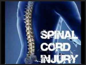 Donor stem cells to treat spinal cord injuries