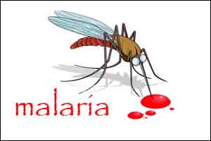 Early detection of all malaria strains now possible with a new portable instrument