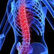 New treatment significantly improved bladder activity after spinal cord injury