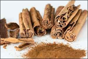 Cinnamon fights obesity by turning up heat on fat cells