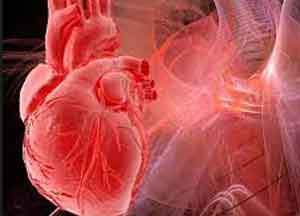 An injectable gel that helps heart muscle regenerate after heart attack