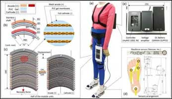 Wearable muscles to help people walk again