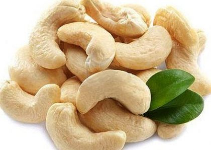 Cashew nuts beneficial for cardiovascular health of Indians with Type 2 DM