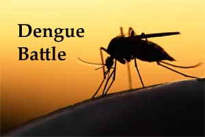 ICMR develops Ayurvedic Capsule to Cure Dengue, currently under Trial