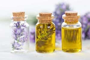 Lavender and Tea Tree Oil may predispose to Gynecomastia