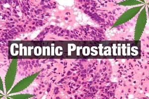 Intervention for treating chronic prostatitis and chronic pelvic pain in men