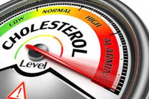 HDL cholesterol greater than 60 mg/dl increases risk of heart attack-ESC Update