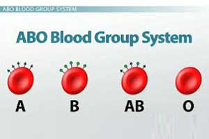 KMC doctors first to identify a rare blood group in India