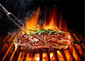 Use of  wood or coal for cooking increases risk of respiratory diseases and death