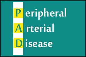 Calcium Channel Blockers prevent Peripheral artery disease in High BP