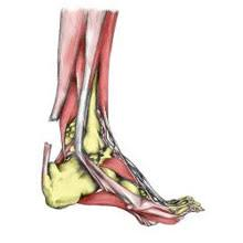 Is Surgery best option for Achilles rupture, explores BMJ study