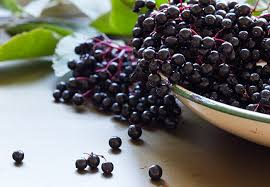 Elderberry syrup effectively controls cold and flu symptoms