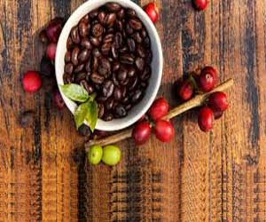 Coffee Fruit Extract Is the Superfood Supplement Your Brain Needs