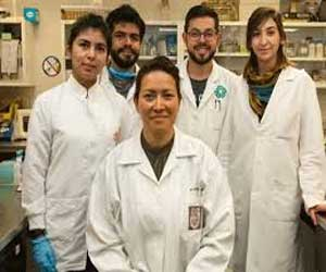 Breakthrough- Mexican scientist discovers therapy for 100% elimination of HPV, cause of cervical cancer