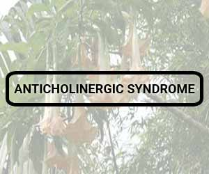 Anticholinergic toxicity due to accidental ingestion of Brugmansia suaveolens leaves : a report