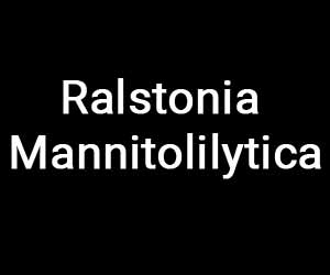 Rare case of sepsis by Ralstonia mannitolilytica: a report